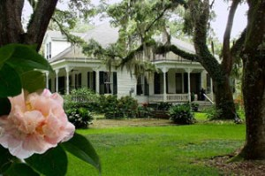 New Orleans Attractions Catalpa Plantation