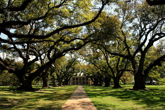 Located just an hour's drive outside of New Orleans, Oak Alley Plantation offers a glimpse into antebellum life. (Photo via Marit & Toomas Hinnosaar on Flickr)