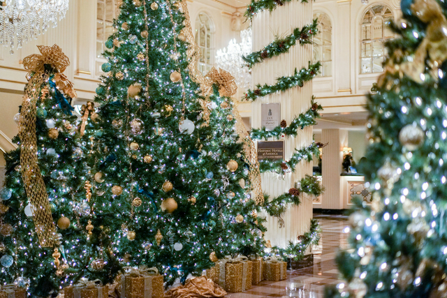 Our Unbeatable Papa Noel Rates & New Orleans Holiday Greats