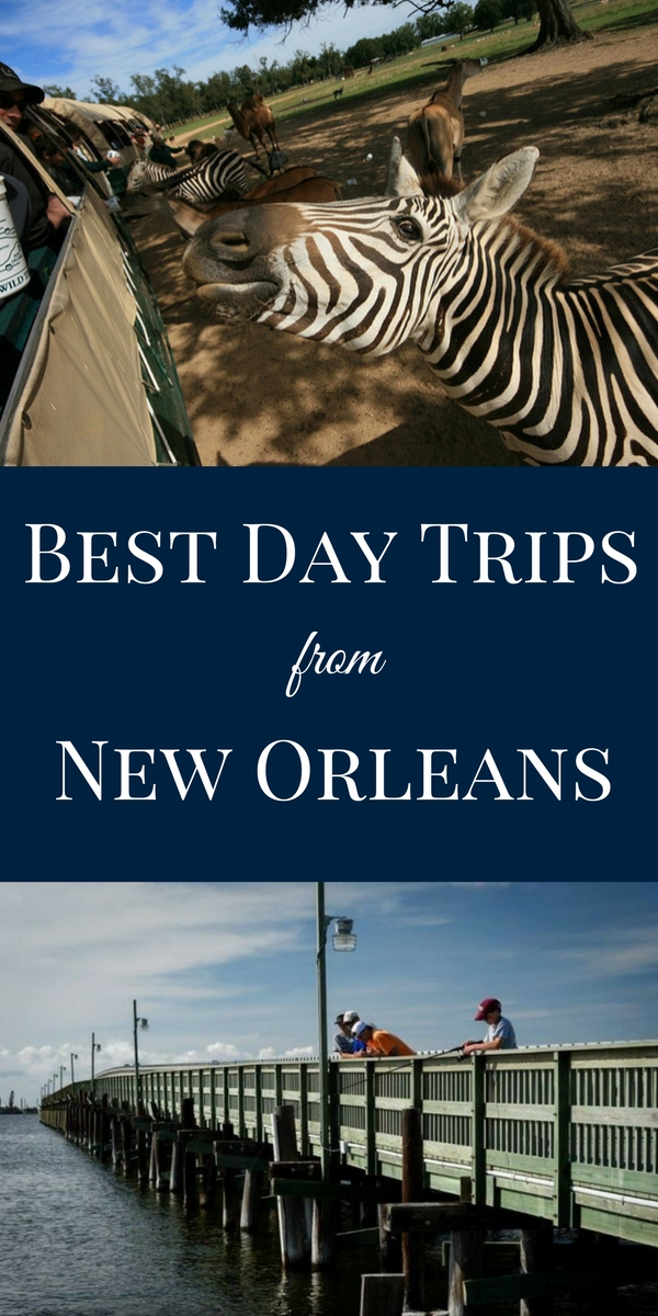 Ready to see exotic animals, take a walk on the beach or sample craft beer? Try one of these quick day trips from New Orleans.